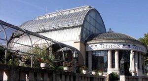 terasz: budapest pálmaház